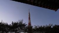tower111028_2.jpg
