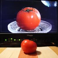 tomato1205.jpg